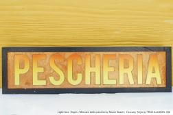 LIGHT BOX / SIGNS / MERCATO DELLA PESCHERIA / MIAMI BEACH